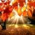 Лучшие книги октября за версии ЛитРес